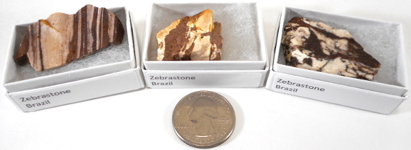 Zebrastone, Brown, Small, Gift Box - 5 Pieces