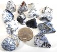 Merlinite (Dendritic Agate), Tumble Polished - 1/5 Pound